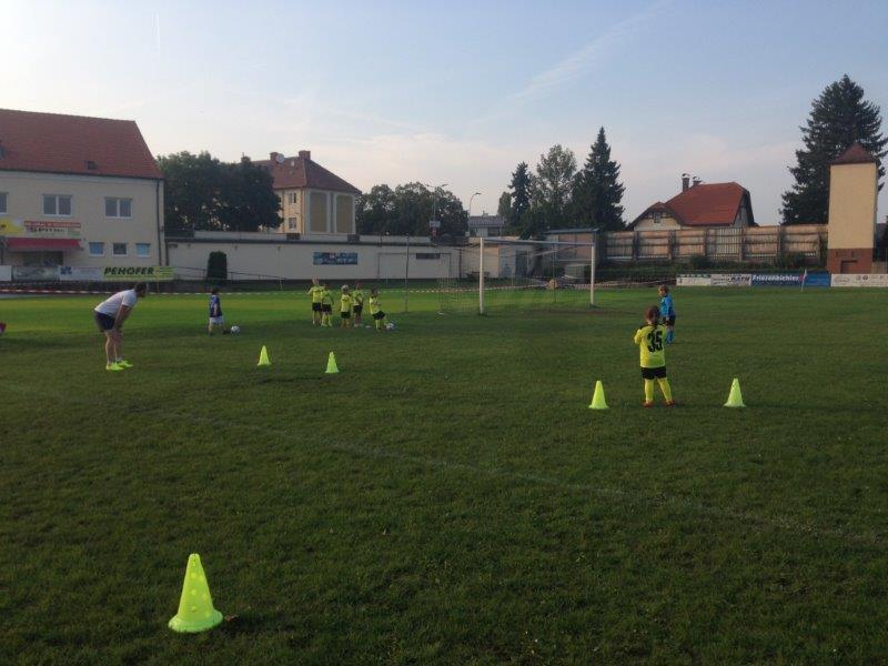 Training (5)