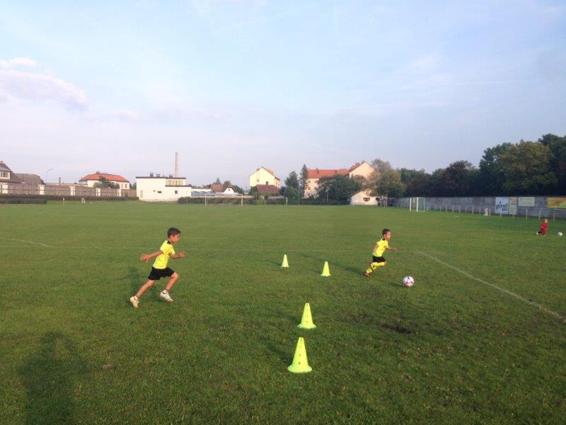 Training6 (3)